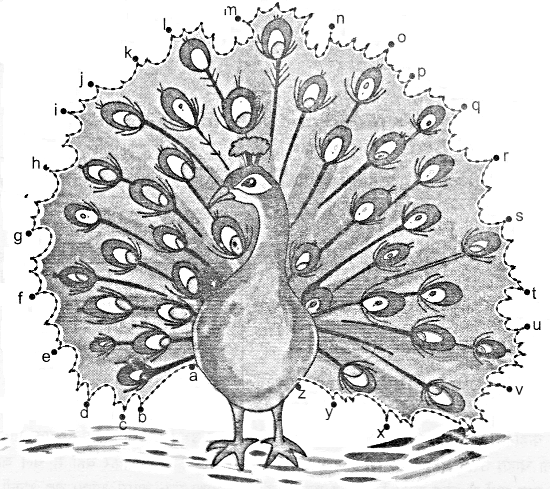 NCERT Solutions for Class 1 English Chapter 7 Once I Saw a Little Bird 1
