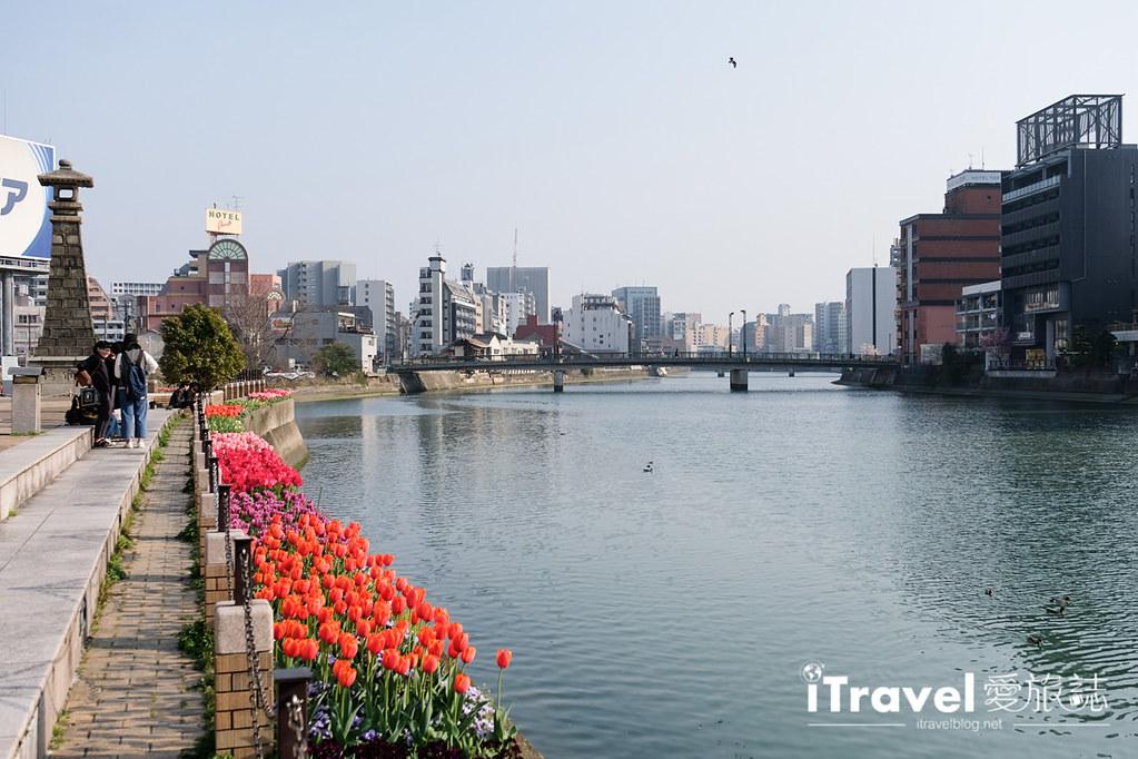 福岡賞櫻景點 博多清流公園 (17)