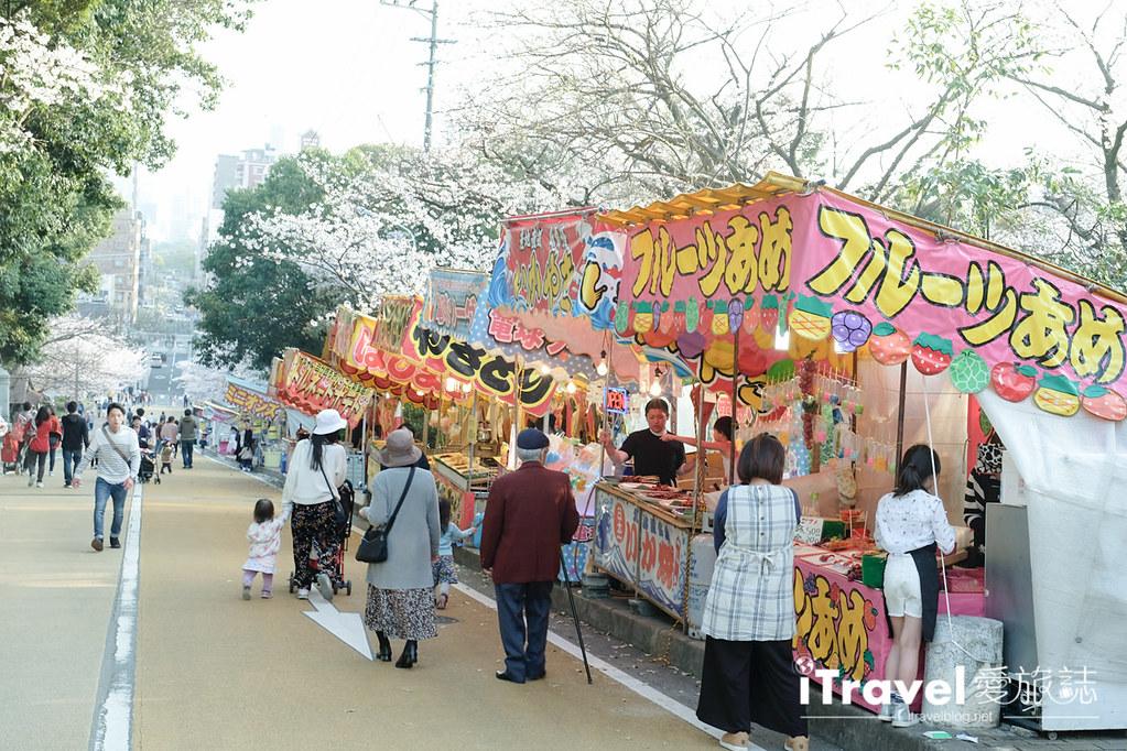 福岡賞櫻景點 西公園Nishi Park (26)