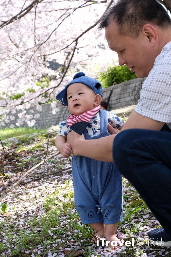 福岡賞櫻景點 美野島南公園 (38)