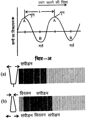 RBSE Solutions for Class 9 Science Chapter 11 ध्वनि 20