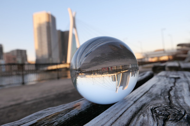lensball on the bench