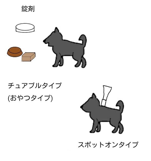 犬のノミマダニ対策薬の種類