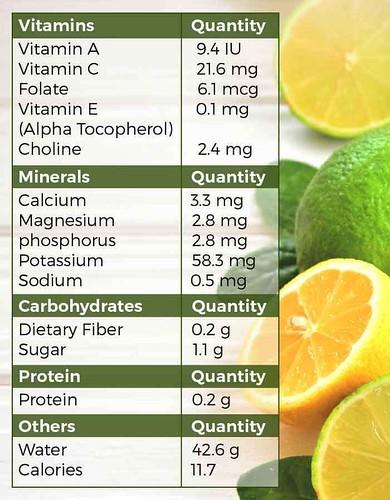 Cara Membuat Air Sari Lemon Murni Untuk Diet