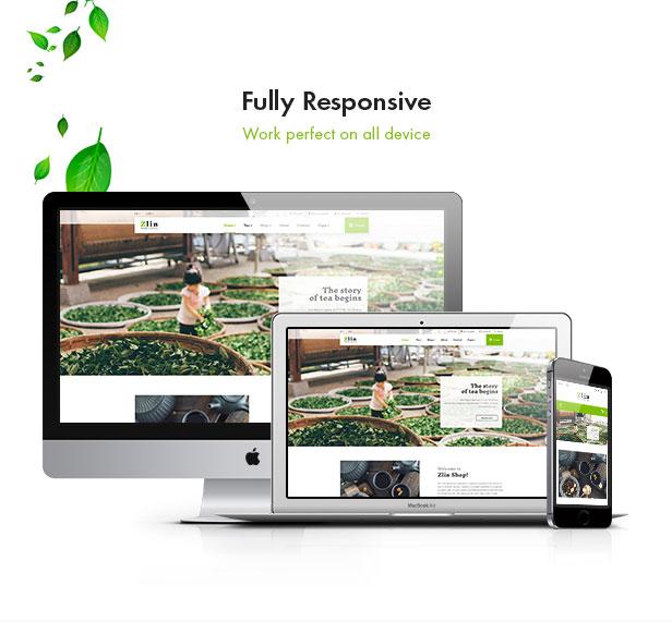 Leo Zlin - best prestashop tea shop theme - Fully responsive