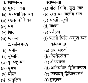 RBSE Solutions for Class 9 Science Chapter 8 Vital activities of living 9