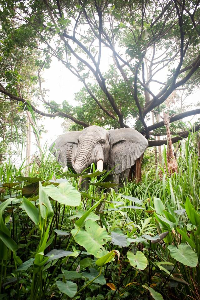 Hong Kong Jungle Cruise Elephant