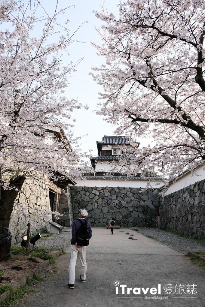 福岡賞櫻景點 福岡城 (13)