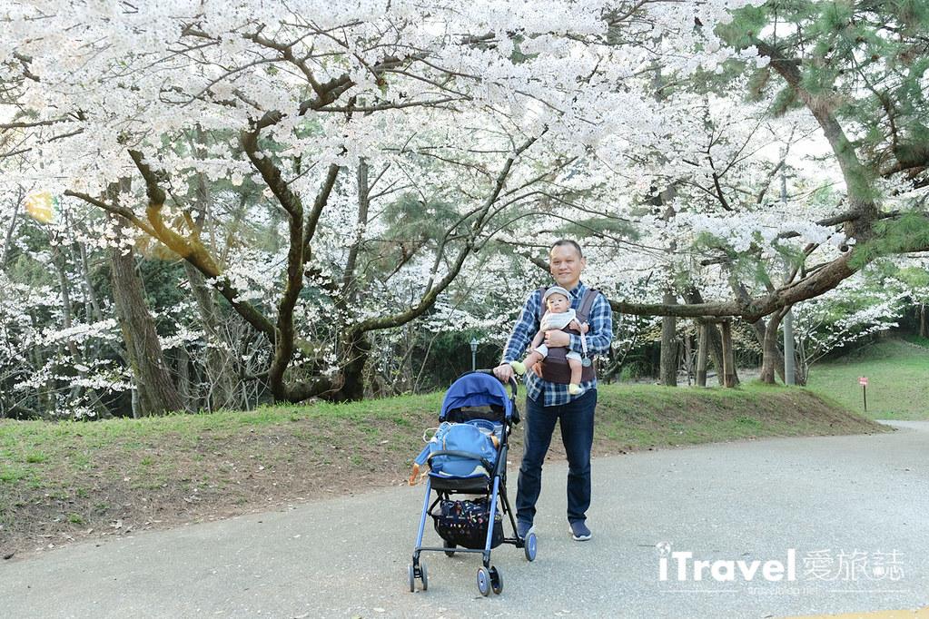 福岡賞櫻景點 西公園Nishi Park (63)