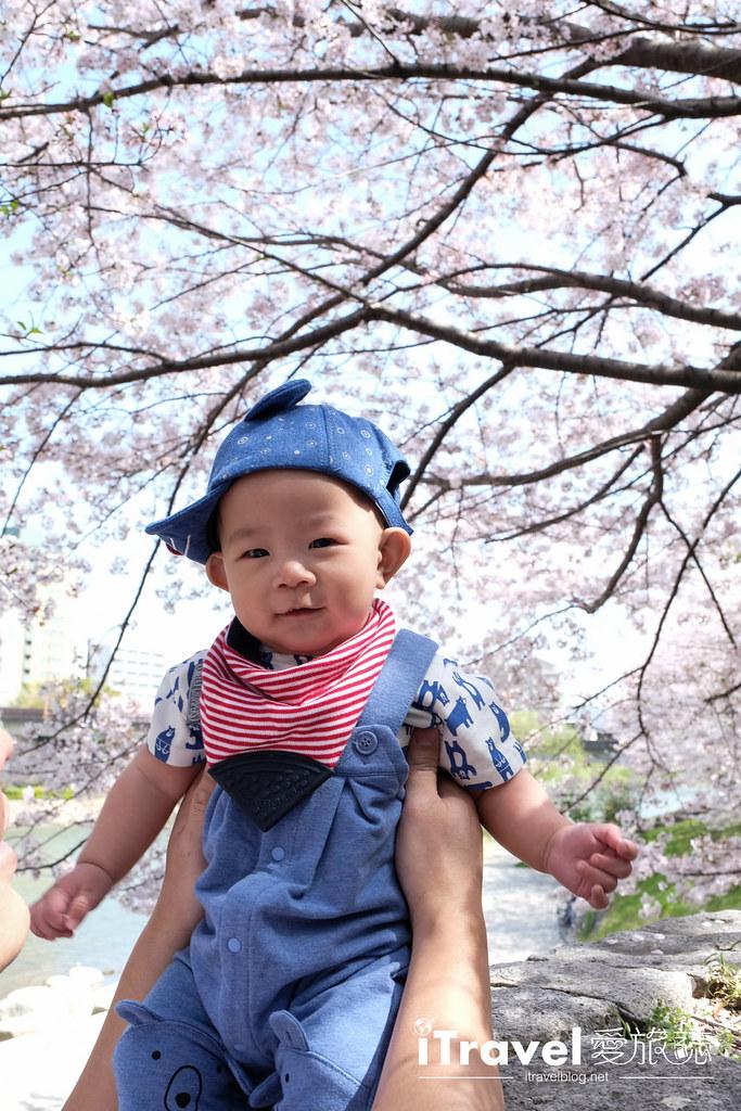 福岡賞櫻景點 美野島南公園 (44)