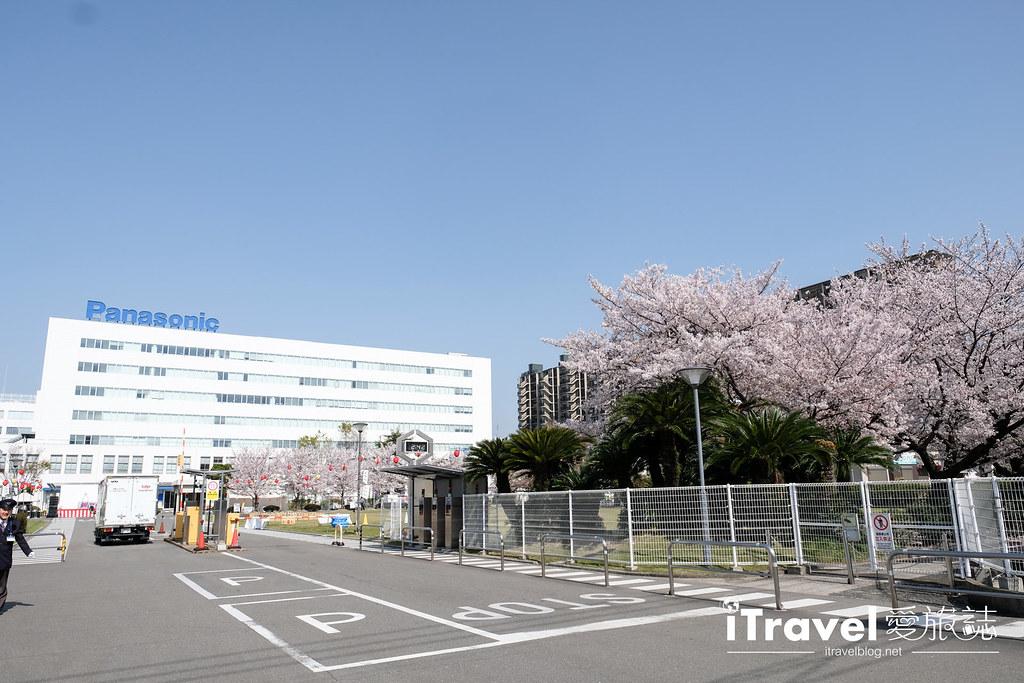 福岡賞櫻景點 美野島公園、東領公園 (6)