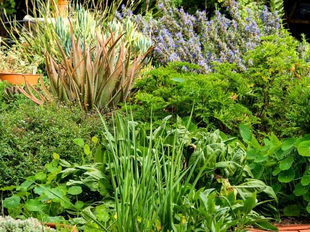 A Bit of the Garden