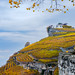 Autumn vineyards in Lavaux, Switzerland