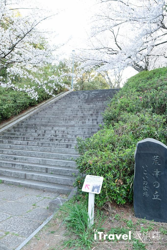 福岡賞櫻景點 西公園Nishi Park (51)
