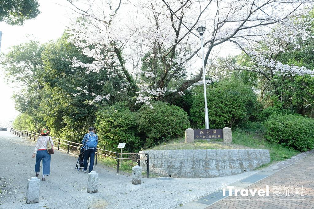 福岡賞櫻景點 西公園Nishi Park (16)