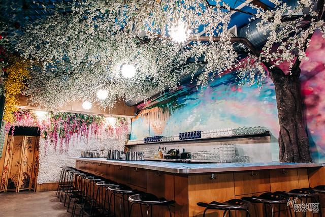Cherry Blossom Bar 2019-1