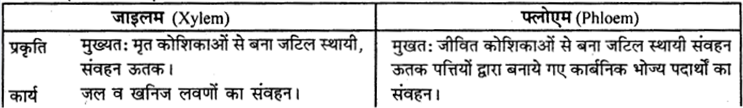 RBSE Solutions for Class 9 Science Chapter 8 Vital activities of living 38