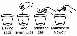 RBSE Solutions for Class 7 Science Chapter 5 Acids, Bases