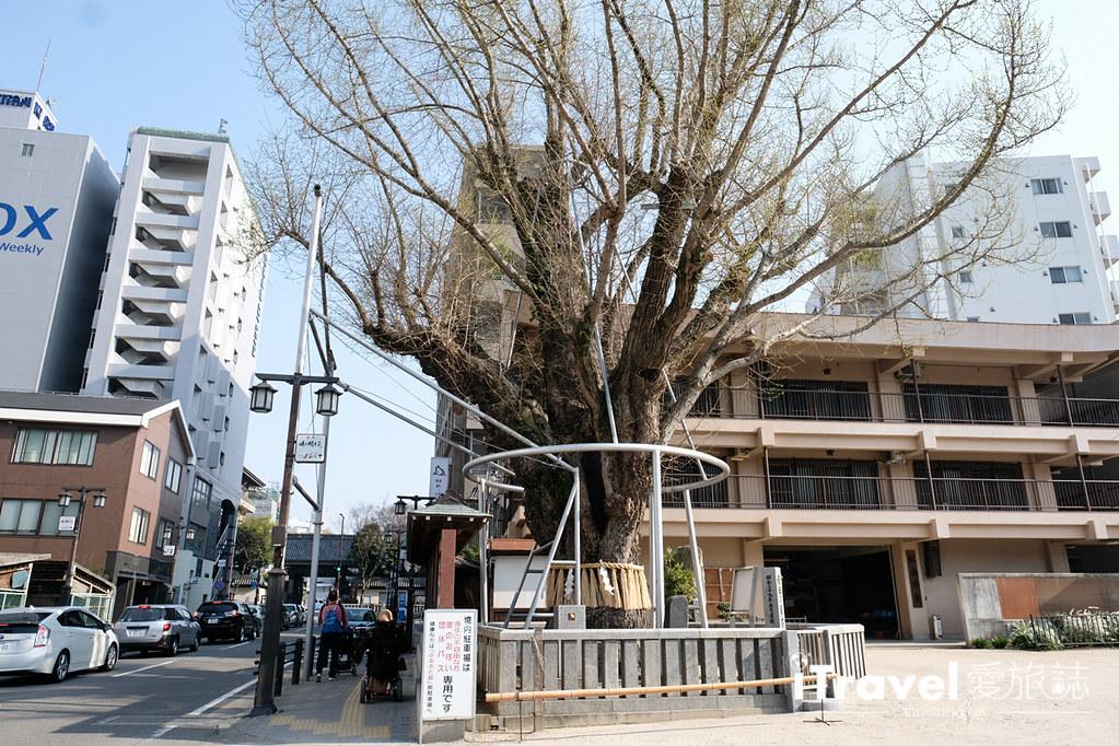 福岡賞櫻景點 櫛田神社 (37)