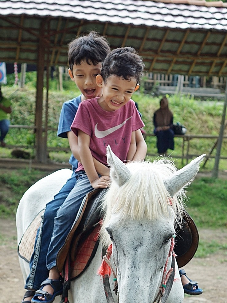 Manfaat berkuda