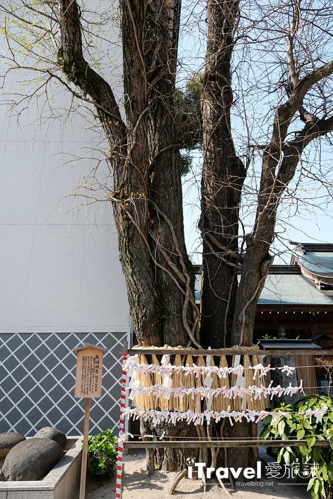 福岡賞櫻景點 櫛田神社 (29)