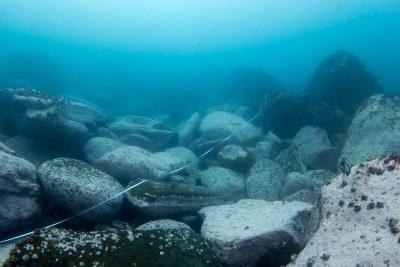 Barren twice over #marineexplorer