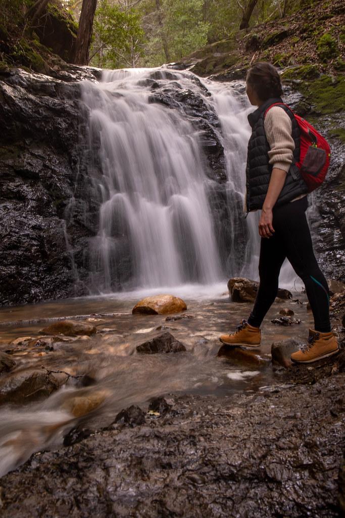 02.23. Uvas Canyon Falls