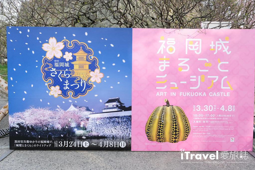 福岡賞櫻景點 福岡城 (29)