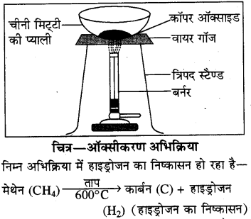RBSE Solutions for Class 8 Science Chapter 4 Q47