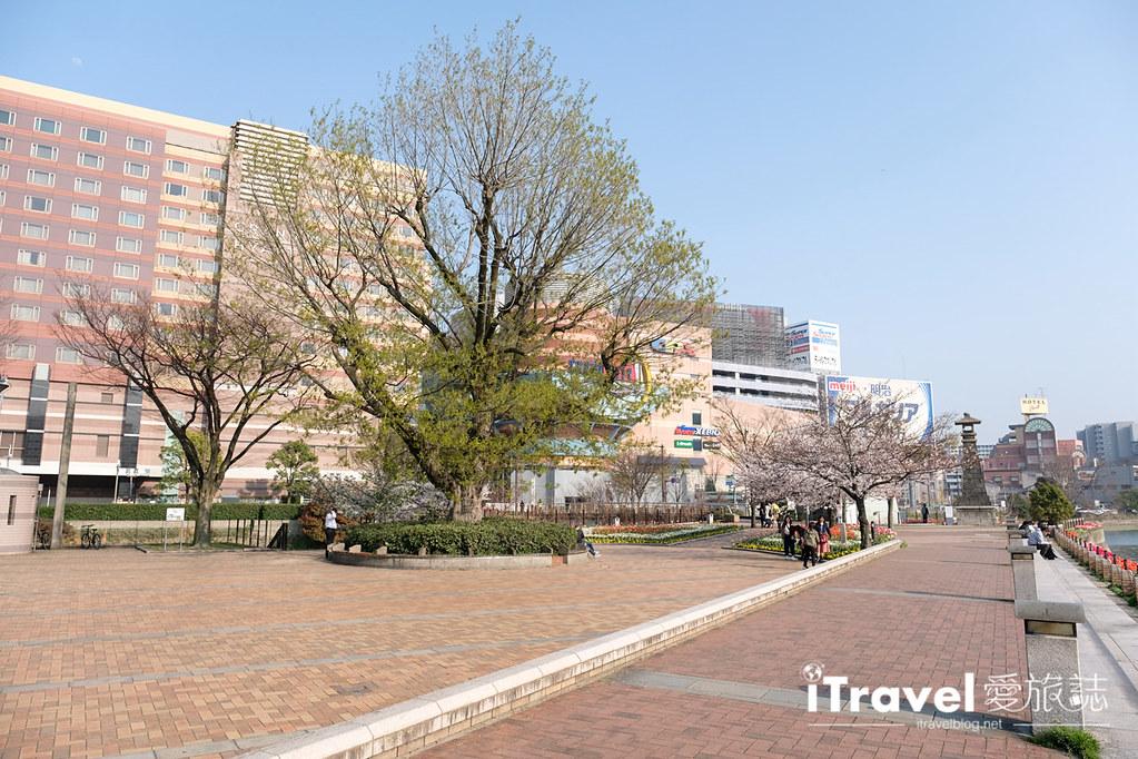 福岡賞櫻景點 博多清流公園 (18)