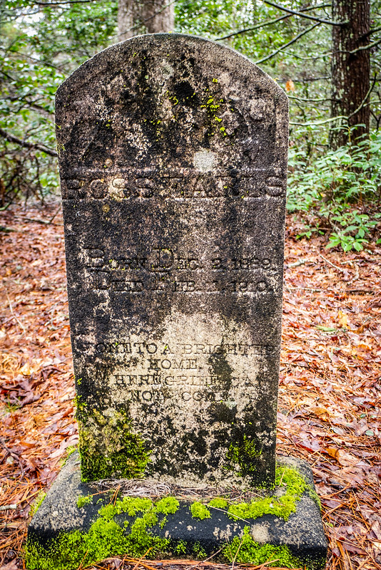 Tall Pines Preserve and South Saluda Church Cemetery-53