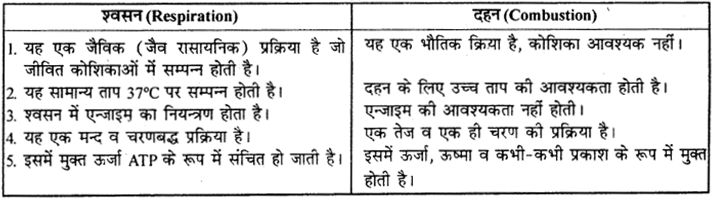 RBSE Solutions for Class 9 Science Chapter 8 Vital activities of living 41