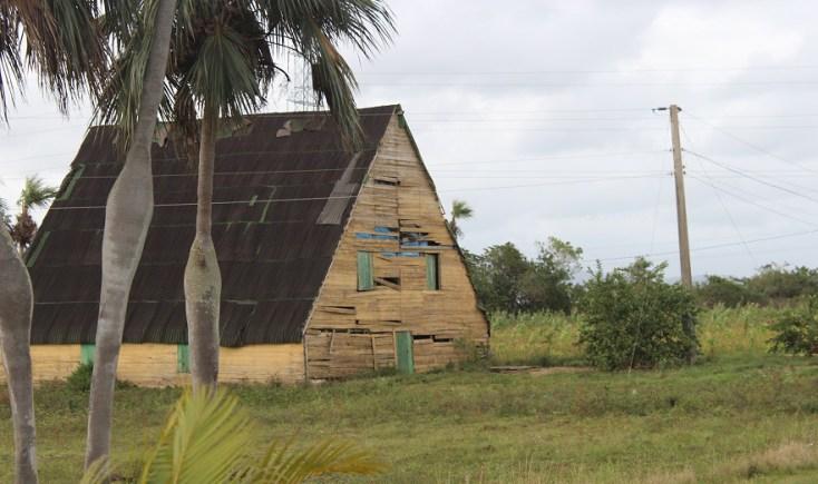 Vinales tobacco farm, Cuba itinerary