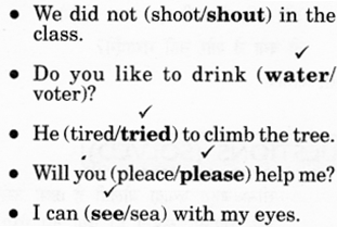 NCERT Solutions for Class 2 English Chapter 20 Strange Talk 8