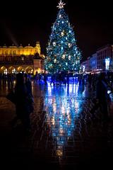 Kraków choinka na Rynku Głównym światło