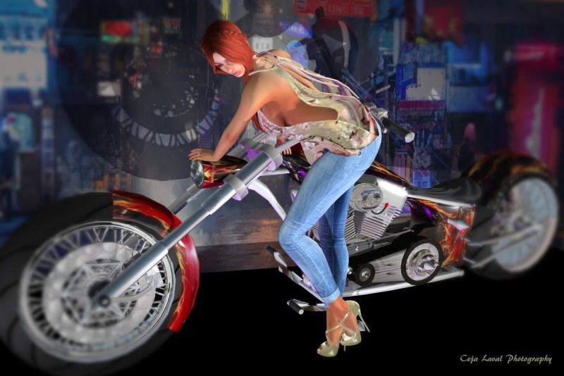 Easy Rider, part Deux