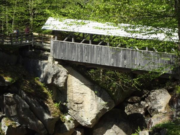 Sentinel Pine Bridge