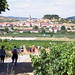 """2016-08-01-navarrete-la-rioja-0002 • <a style=""""font-size:0.8em;"""" href=""""http://www.flickr.com/photos/51501120@N05/29213855476/"""" target=""""_blank"""">View on Flickr</a>"""