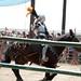 Renaissance Pleasure Faire 2012 068