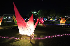 Peace Crane at Night