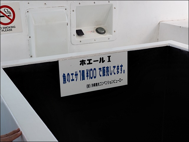 P6180965