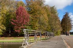 Parc de Tervueren - Automne 2012