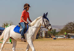 """Crossroads Equestrian Centre • <a style=""""font-size:0.8em;"""" href=""""http://www.flickr.com/photos/67597598@N08/29678696961/"""" target=""""_blank"""">View on Flickr</a>"""