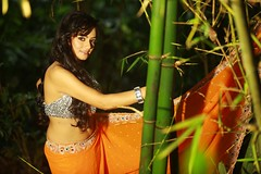 South actress MADHUCHANDAPhotos Set-3-HOT IN TRADITIONAL DRESS (22)