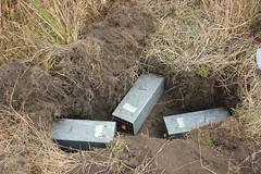 Mazama Pocket Gopher trapping array