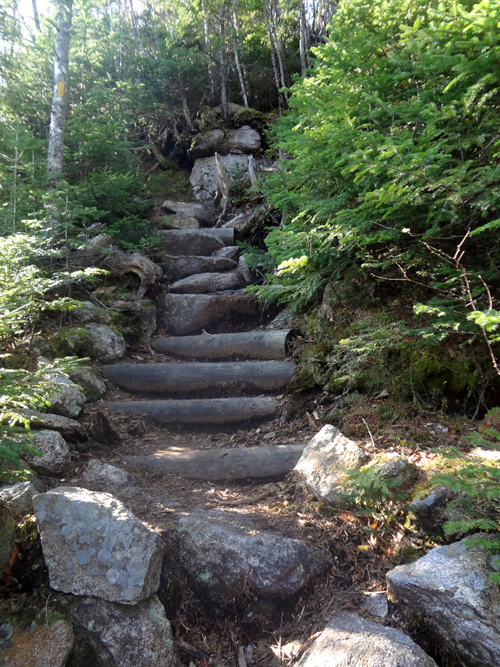 Osseo Trail Climb of Mt. Flume