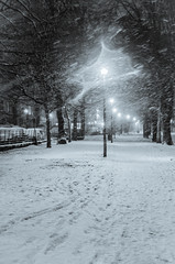 Snow on The Meadows - Fri 18 January 2013 -0041