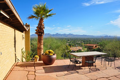 Paradise Valley View