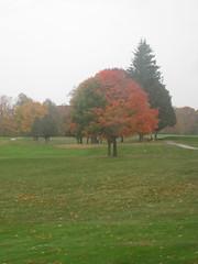 Peninsula State Park Golf Course in Autumn