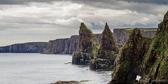 Stacks of Duncansby II